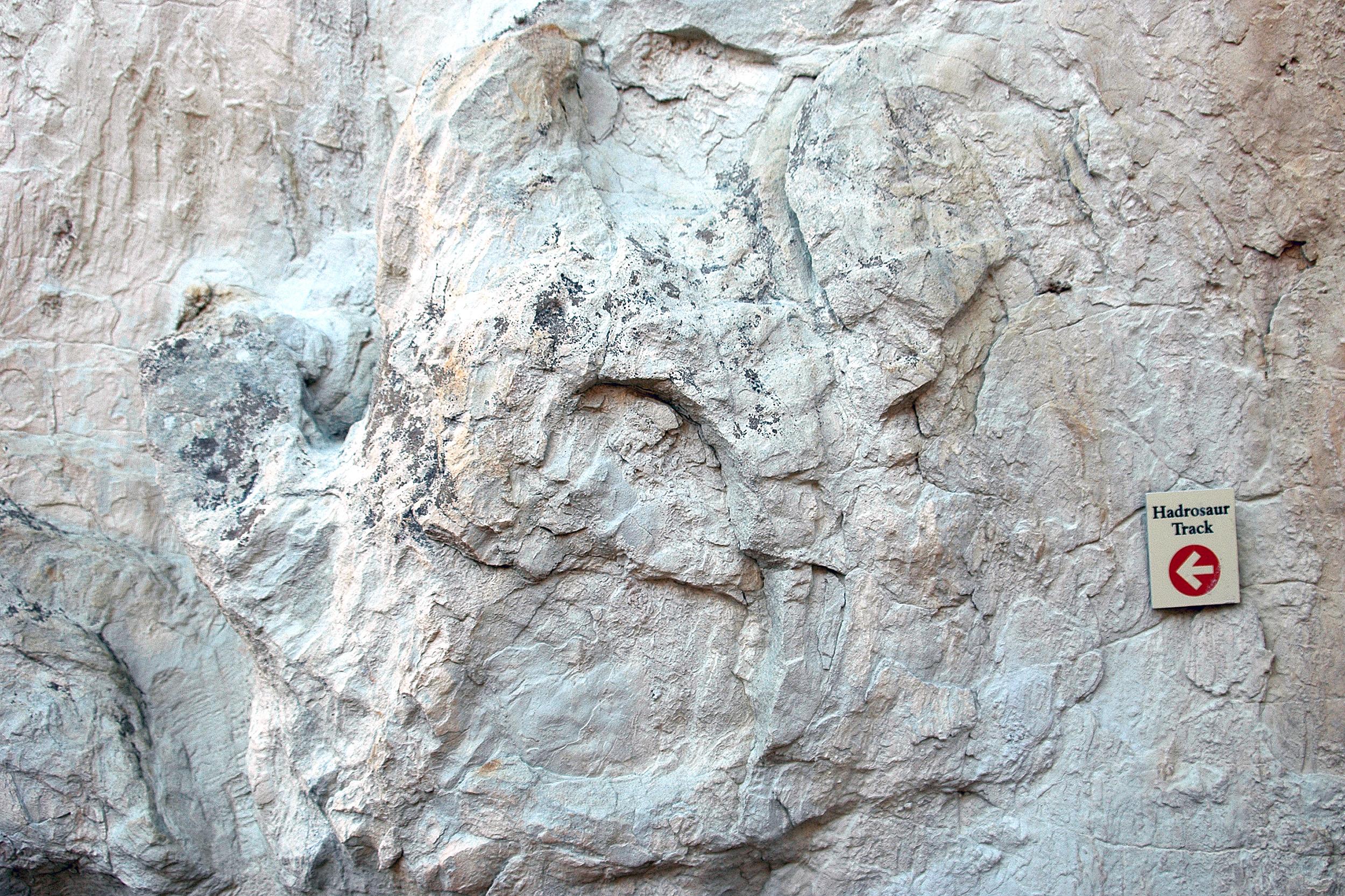 Hadrosaurus Dinosaur Ridge Denver Morrison Colorado