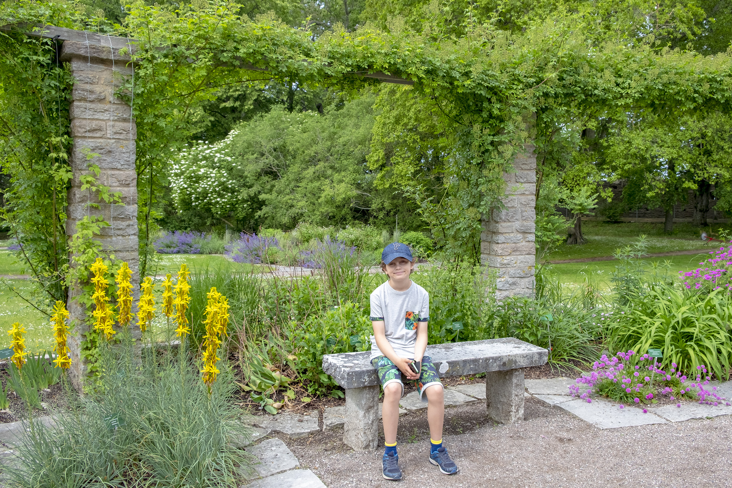 Botaniska trädgården Visby Gotland