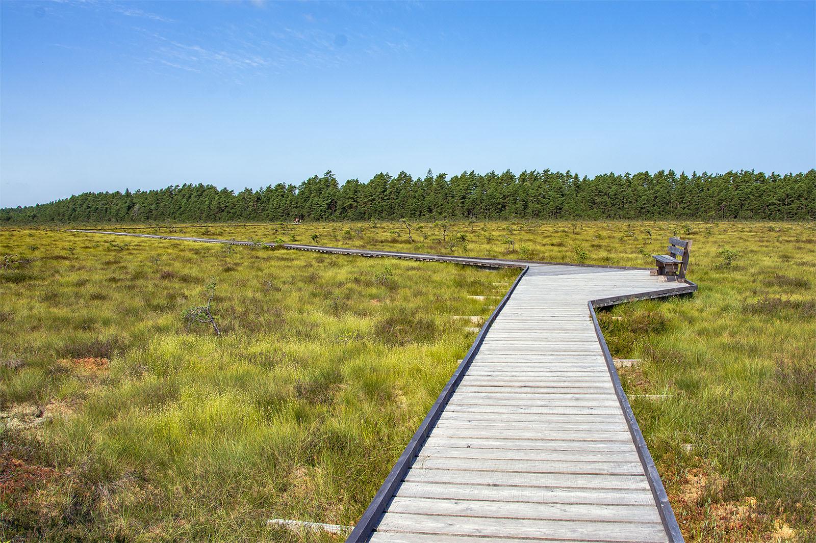 Store Mosse Svartgölsleden sommaren 2021